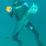 אורי בינסטד והפלמוד מתחת למים