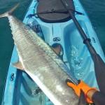 הפלמוד על הקיאק - דייג בצלילה חופשית