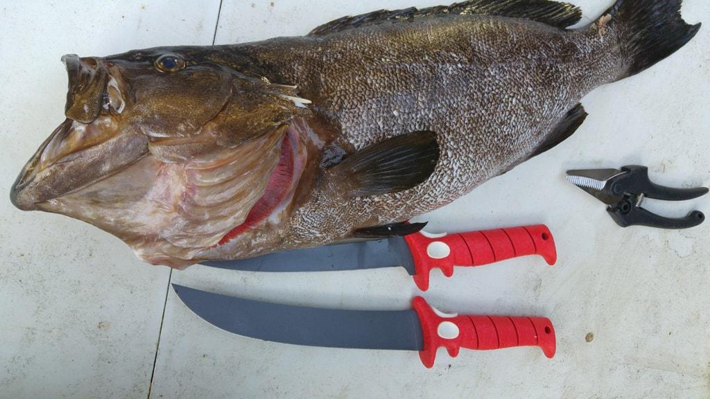זוג סכיני פילוט של בבה בלייד - Bubba Blade